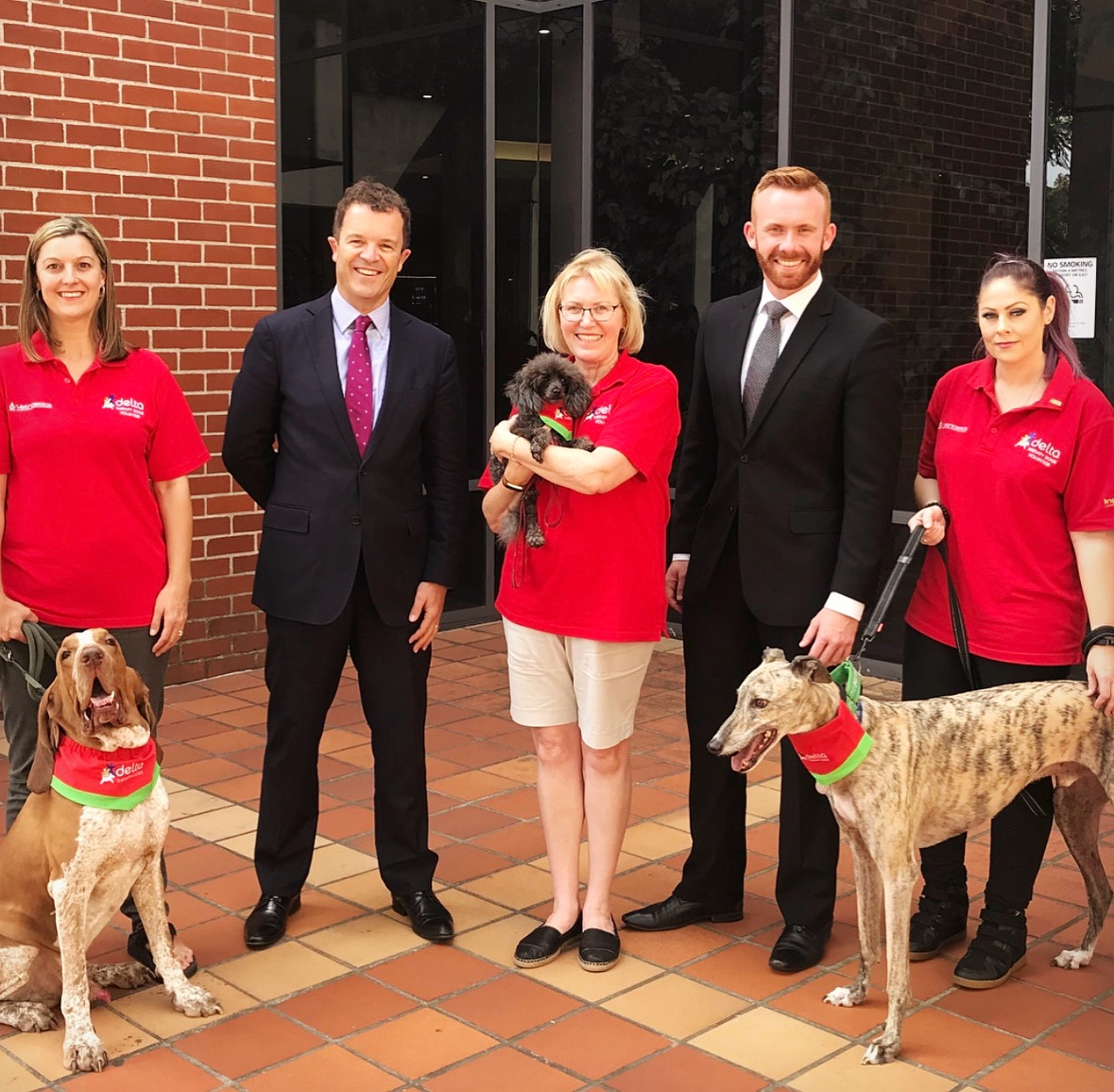 Therapy Dogs headed to Campbelltown court